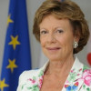 Kroes reveals neutrality consultations