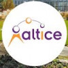 Altice appoints Zerbib CTO