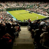 Saudi Arabia rejects Wimbledon piracy claims