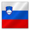 Slovenia awards pay-TV licences on DTT network