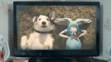 thinkbox-tv-ads-harvey-rabbit-ashx